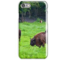 European bisons iPhone Case/Skin