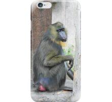 Mandrill iPhone Case/Skin