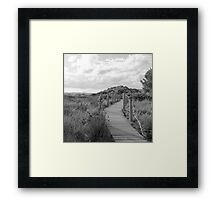 Wooden path crossing grass field in summer Framed Print