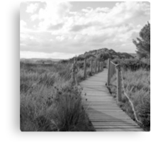 Wooden path crossing grass field in summer Canvas Print