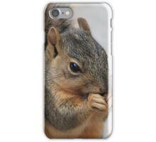 squirrel plotting/eating sunflower seeds iPhone Case/Skin