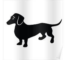 Cute Little Dachshund Drawing Poster