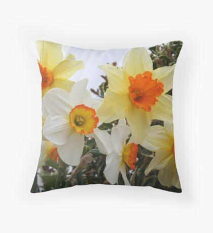 Daffodils! 2010 Throw Pillow