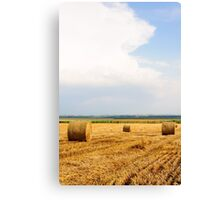 Golden Hay Bales on field after harvesting Canvas Print