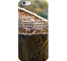 Fence post on ice iPhone Case/Skin