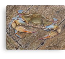 Crab In A Trap Canvas Print