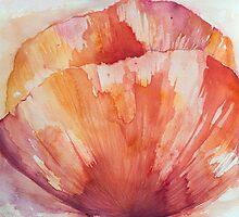 Poppy Red by Anita Murphy