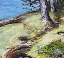 Seaside Mayne Island  by TerrillWelch