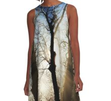 Winter Light A-Line Dress
