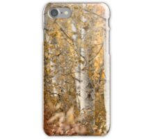 Misted iPhone Case/Skin