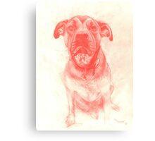 My dog Banjo Canvas Print