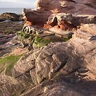 Sandstone Rock formations - Scotland's East Coast by Christopher Cullen