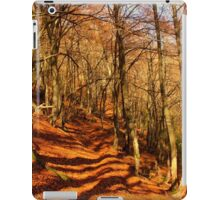 Foret ariegeoise iPad Case/Skin