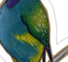 Crested Berrypecker Sticker