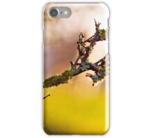 Woolly branch iPhone Case/Skin