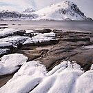 Arctic Shores by Christopher Cullen