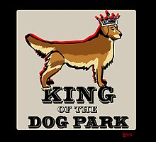 Golden Retriever  King of the Dog Park by BarkleyandCo