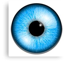 Blue eyes, Eyeball, Pupil, Vision, See, Seeing, sight, eye, eyes, look, looking Canvas Print