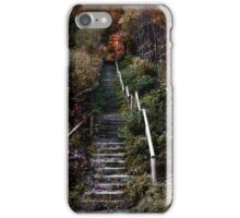 Romantic pathway in fall iPhone Case/Skin