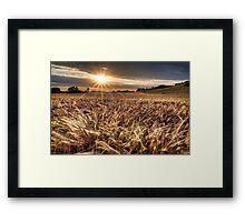 Elysian Fields. Framed Print