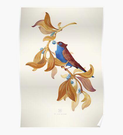Blue birds song Poster