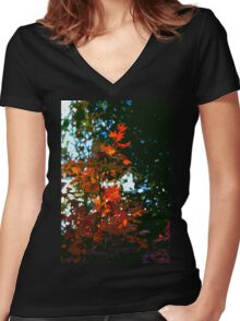 Abstract 281 Women's Fitted V-Neck T-Shirt