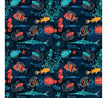 Tropical Fish Under the Sea Photographic Print