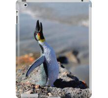 Rocky Bluff iPad Case/Skin