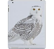 These eyes see all iPad Case/Skin