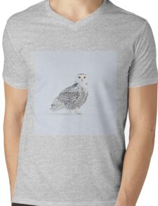 These eyes see all Mens V-Neck T-Shirt