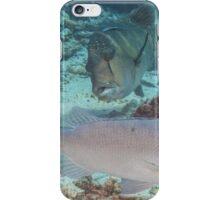 Hunting Trio iPhone Case/Skin