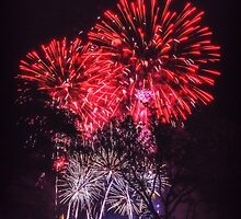 Neon Trees – 4th of July by Owed To Nature