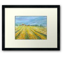 Vineyard, Tuscany by Mary Faux Jackson Framed Print