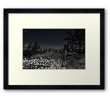 """"""" Desert Nights """" Framed Print"""