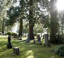 Fair Oaks Cemetery by Jess Meacham