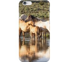 Reflection of a Mustang Family iPhone Case/Skin