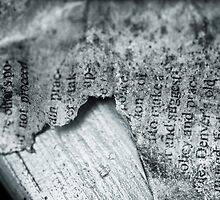 Tattered Pages by Vintagee
