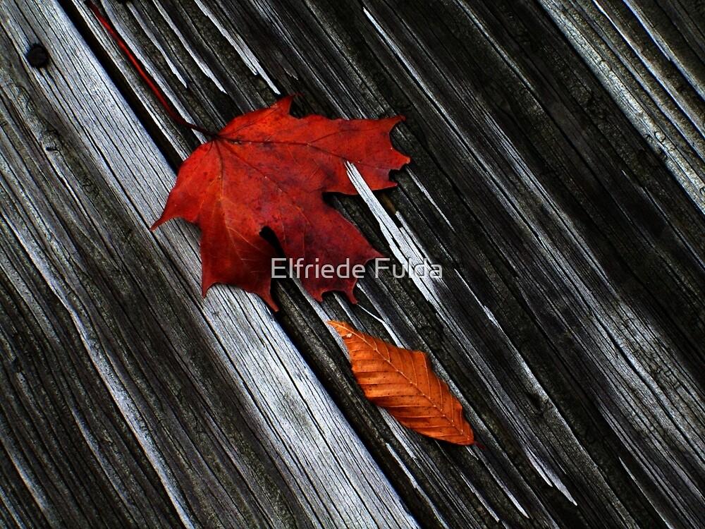The Floor ! by Elfriede Fulda