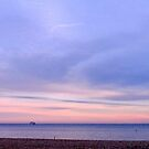 View from the Sailing Club by mikebov