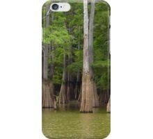 Cook's Lake Panorama iPhone Case/Skin