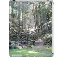 Another Path... iPad Case/Skin