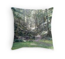 Another Path... Throw Pillow