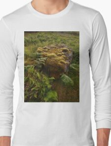 Stone and Moss Long Sleeve T-Shirt
