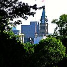 The Peace Tower, Ottawa, ON Canada by Shulie1