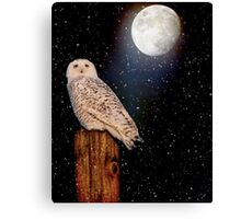 Brighter than the moonlight Canvas Print