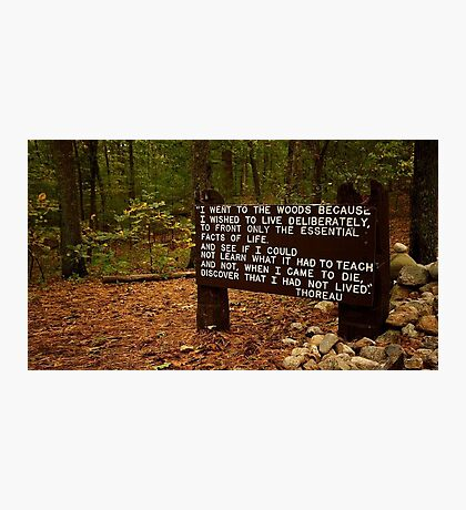 Thoreau in the woods Photographic Print