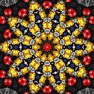 Fractal - Mesh and Beads - Sun Star by LjMaxx