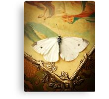 Antique White Butterfly  Canvas Print