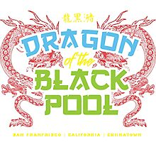 Dragon of the Black Pool Photographic Print