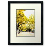 Autumn amber avenues in Paris Framed Print
